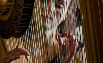 Imogen Ridge classical Harpist