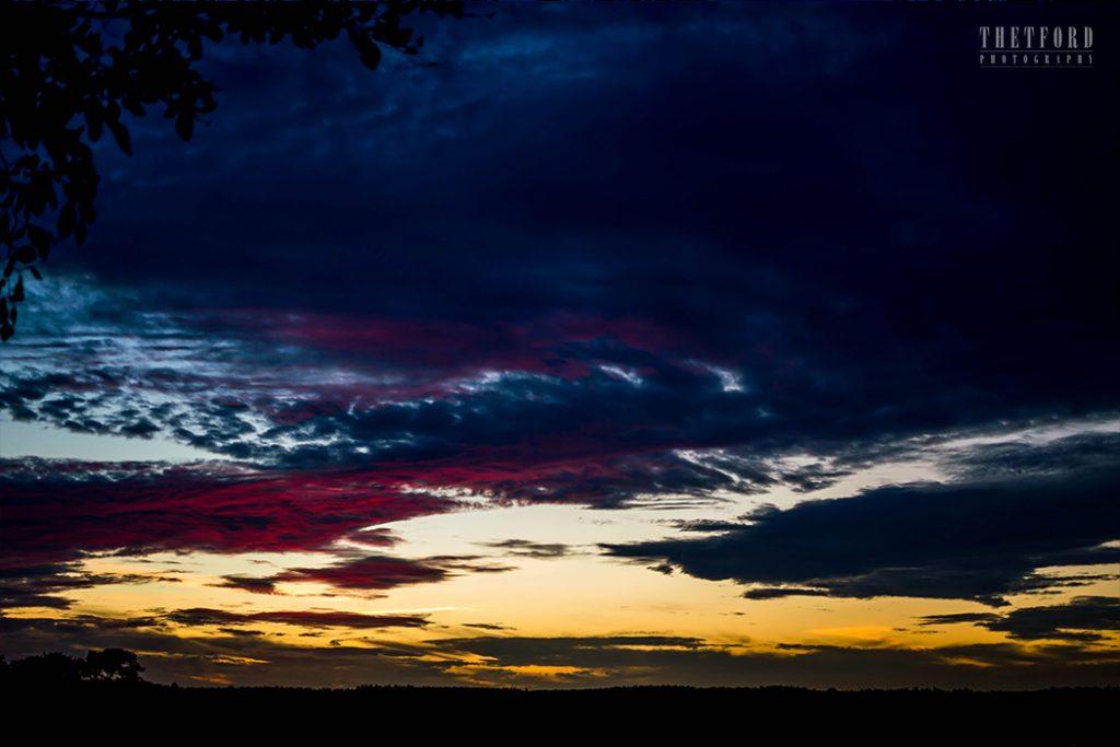 Sunset Thetford Forest Landscape