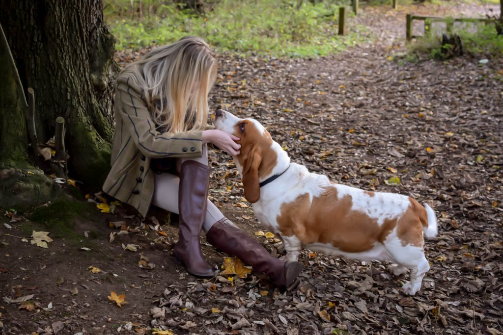 Autumn Clothing Photography Ipswich Suffolk Countryside Dog