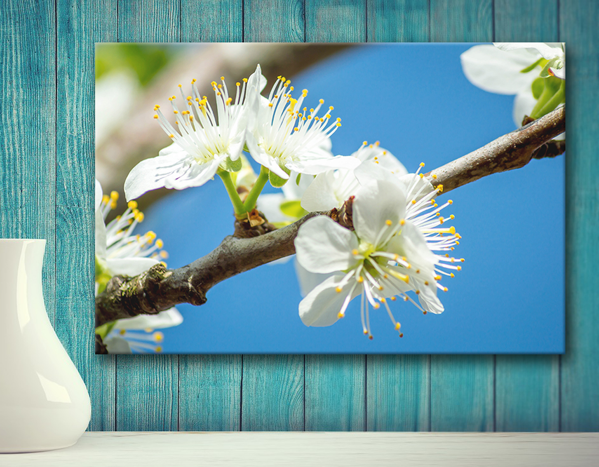 Canvas prints Thetford photography made to order