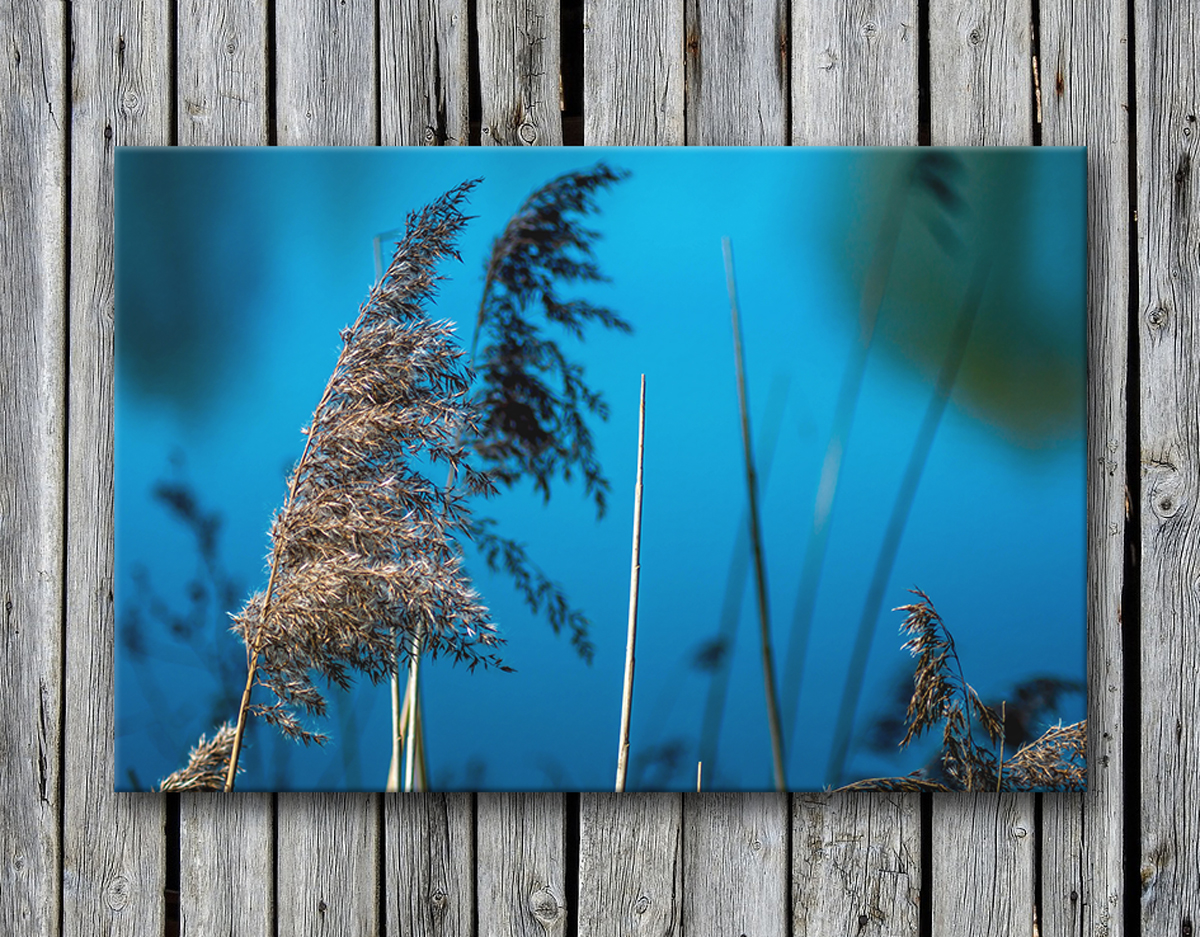 Canvas prints Thetford photography