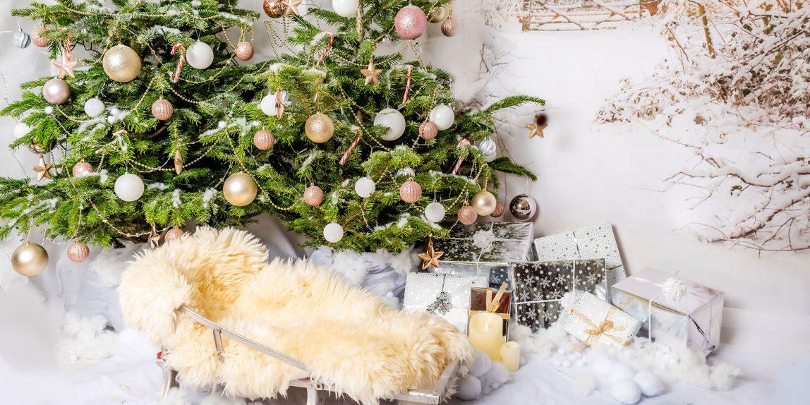 Christmas Photoshoot set up