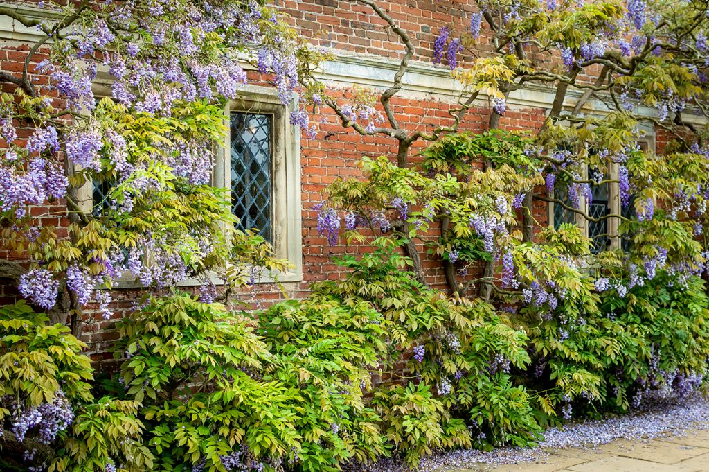 North Norfolk Country Home Architectural photography